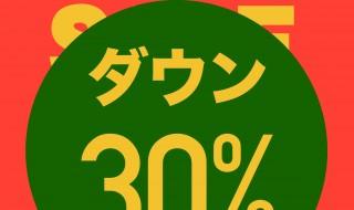 ダウン30%OFF-1